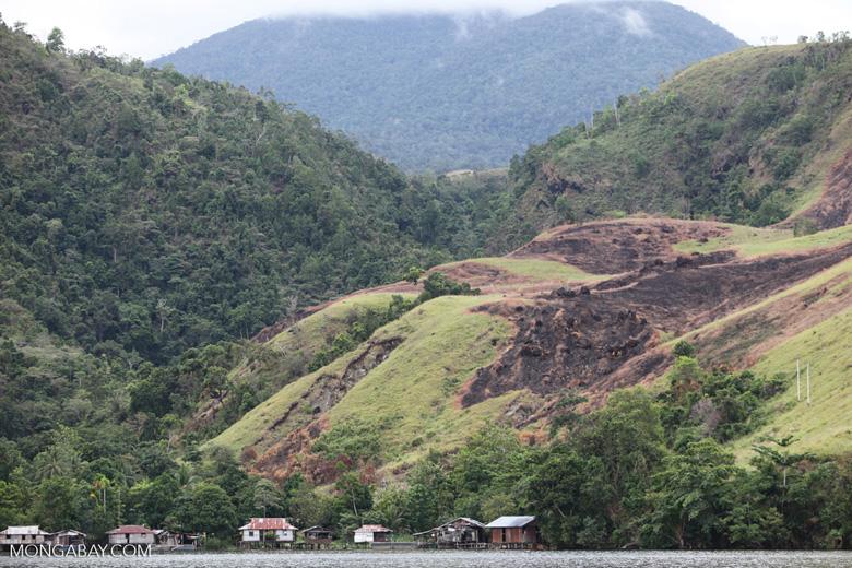 Deforestation around Lake Sentani