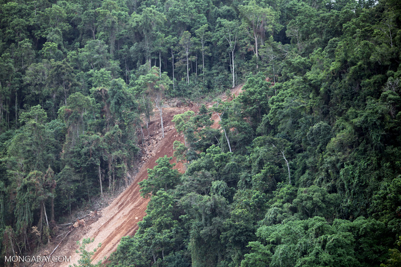 Deforestation-induced landslide near Jayapura
