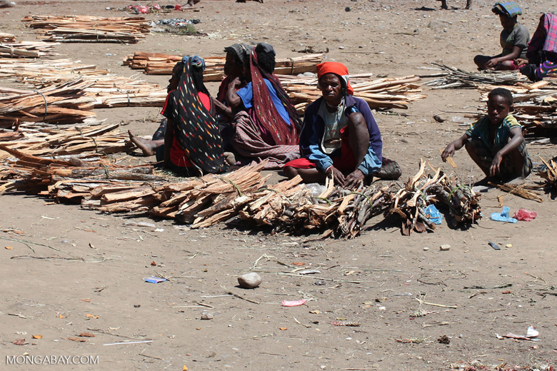 Papuans selling firewood in Wamena's central market