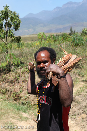 Lani man carrying firewood and a machete