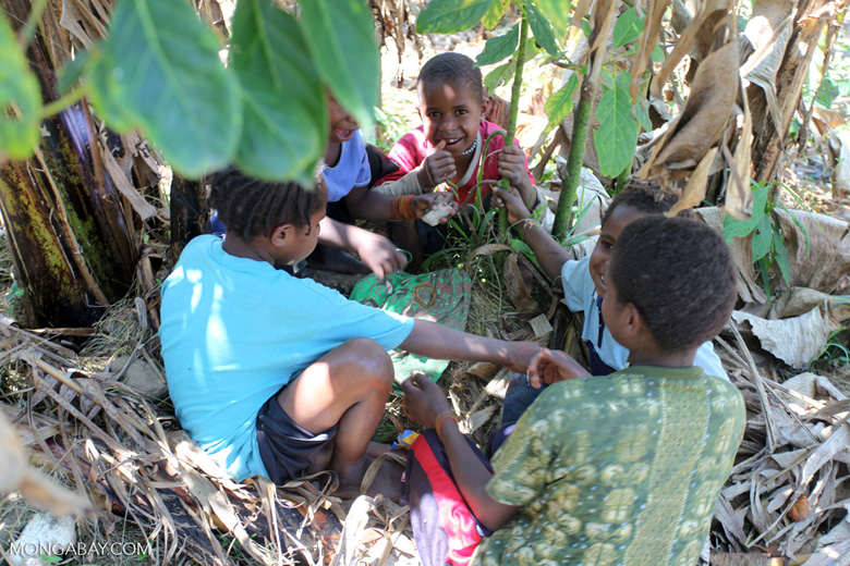 Papuan kids playing a game
