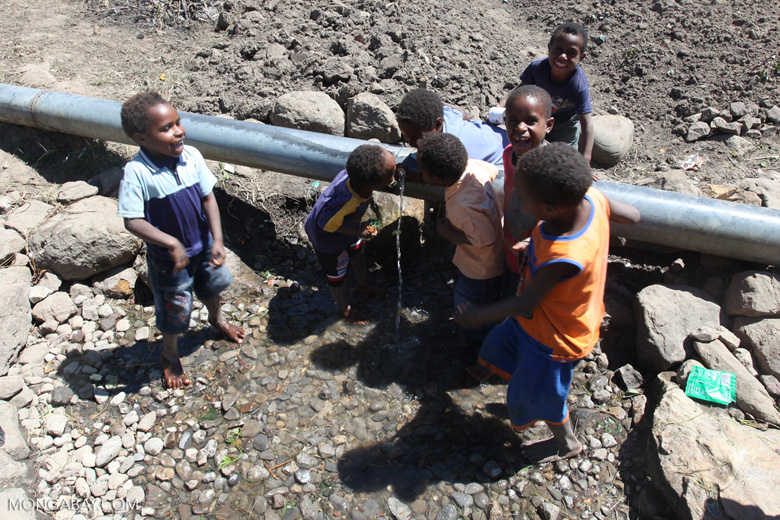 Papuan kids drinking out of a leaking water pipe
