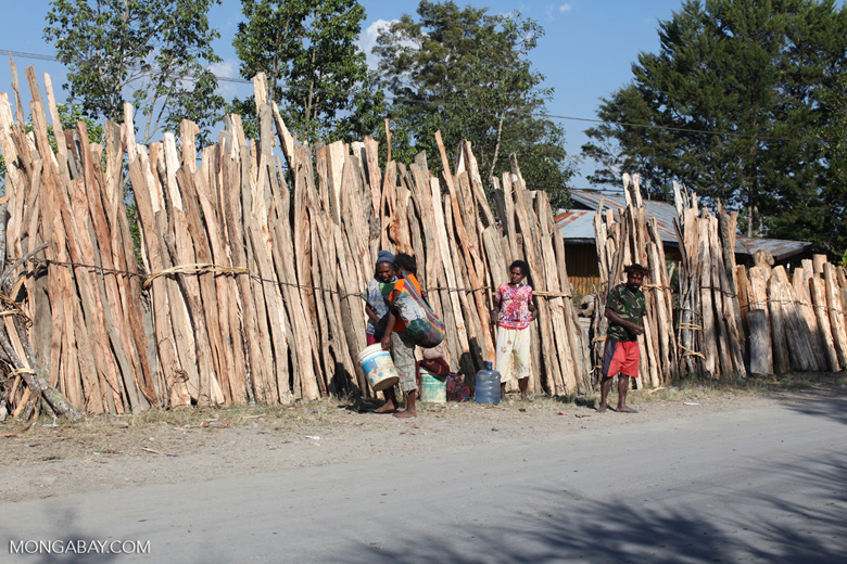 Papuans selling wood