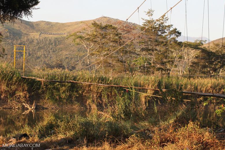 Rope bridge in New Guinea