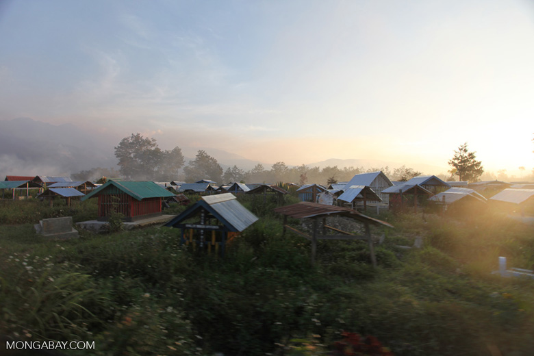 Haze over the cemetary in Wamena