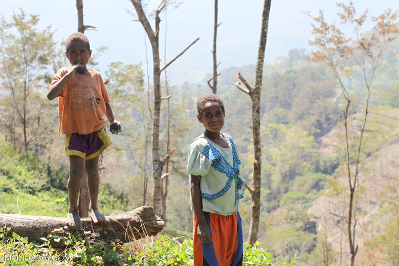 Dani children in the highlands of New Guinea
