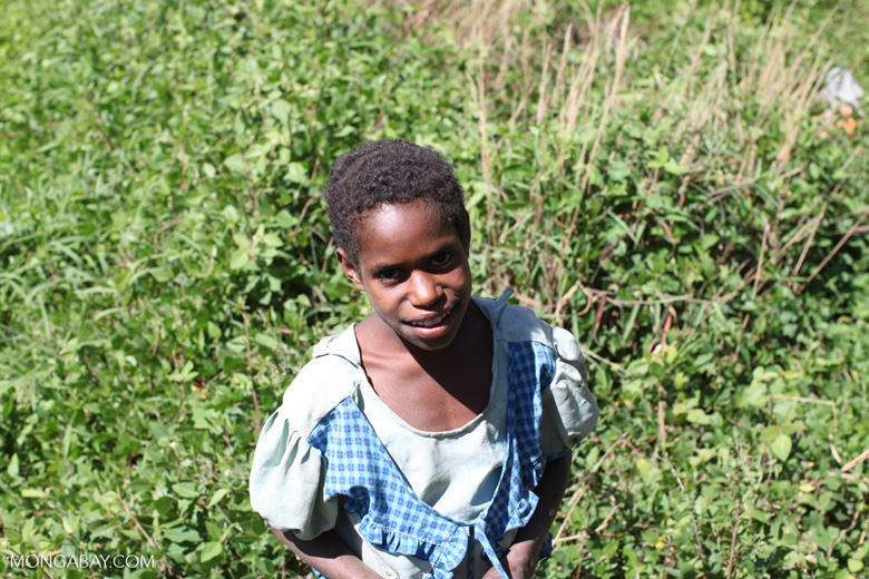 Dani girl in the highlands of New Guinea
