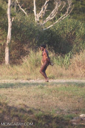 Papuan man walking with penis sheath