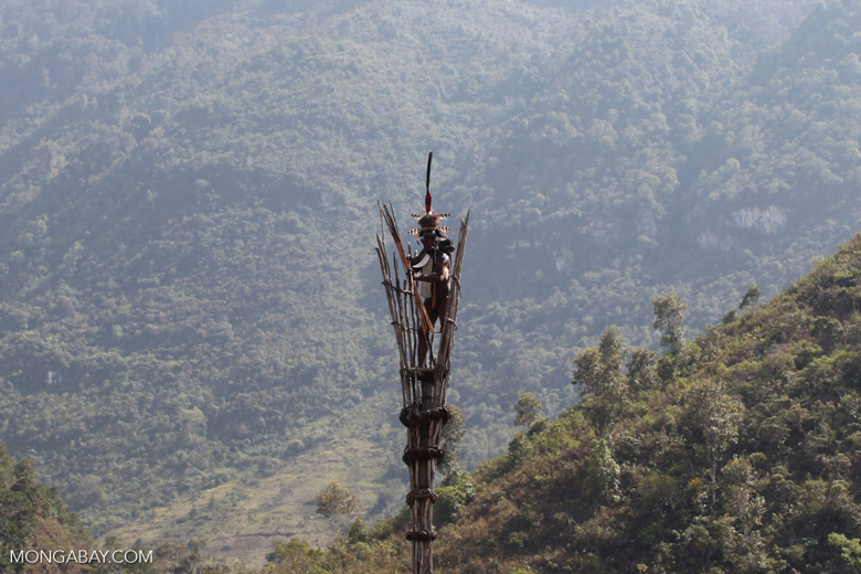 Dani elder in traditional dress atop a watch tower