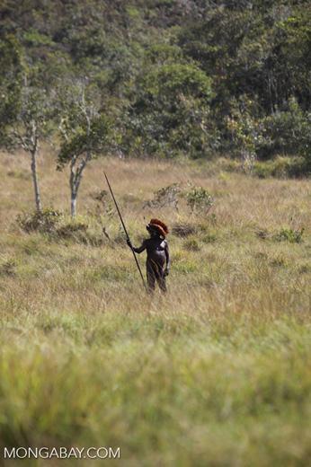 Dani man in a savanna