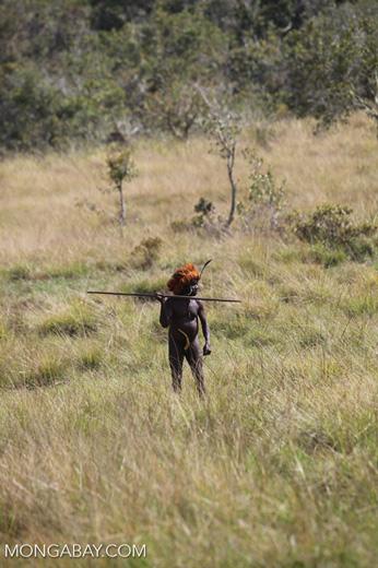 Dani man hunting