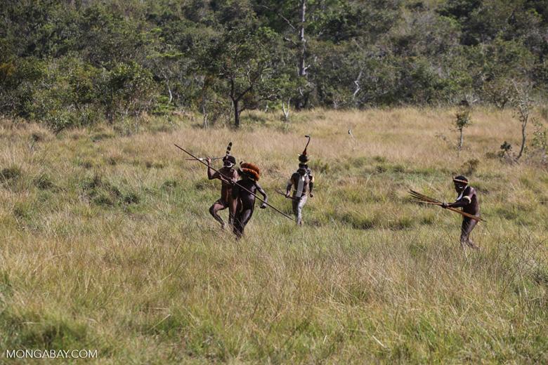 Dani men in ceremonial battle