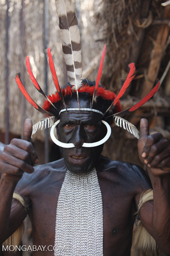 Dani man in New Guinea with hog bone in his nose