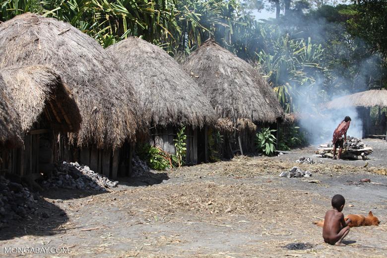 Papuan village