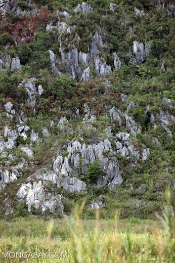 Limestone rock formations in New Guinea