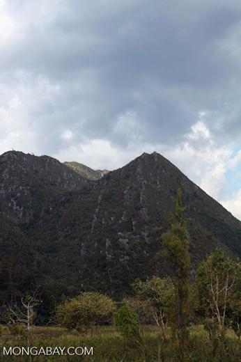 Limestone rock mountain in New Guinea