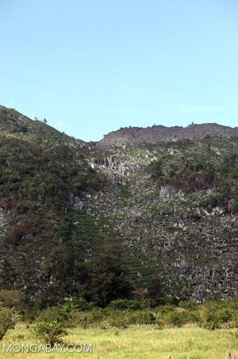 Terraced fields amid limestone rock formations in New Guinea