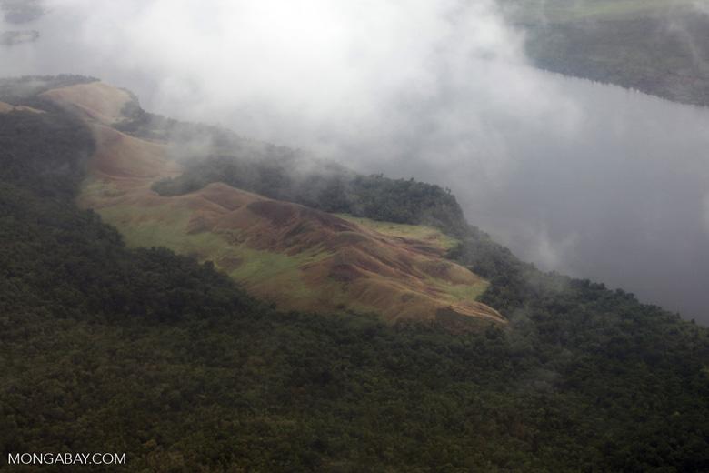 Deforestation near Lake Sentani
