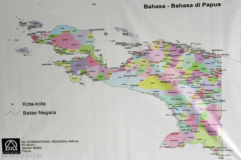 Languages of Papua