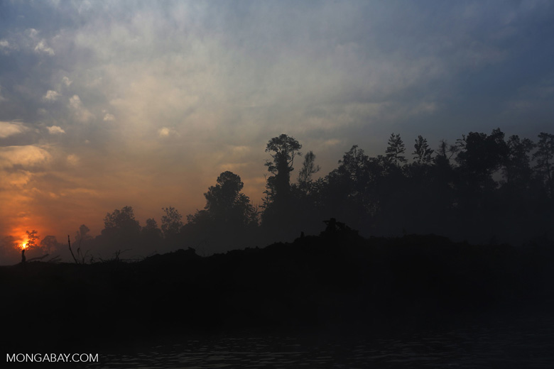 Sunset over a deforested area [riau_0311]