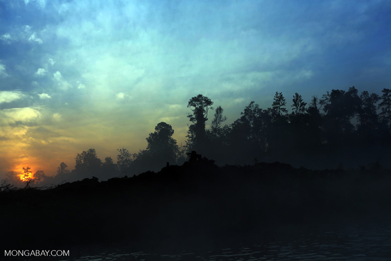 Sunset over a deforested area [riau_0315]