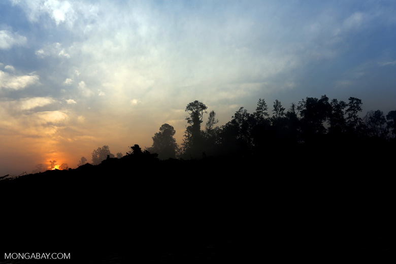 Sunset over a deforested area [riau_0319]