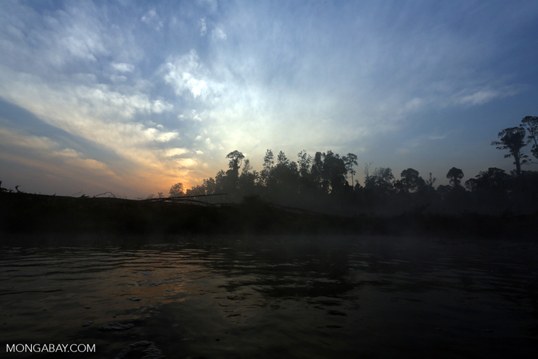 Sunset over a deforested area [riau_0322]