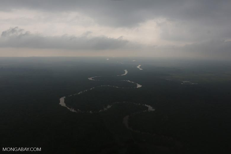 River in the Riau peatlands [riau_1046]