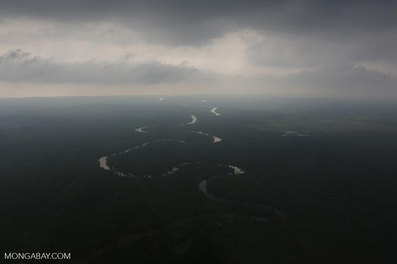 River in the Riau peatlands [riau_1047]