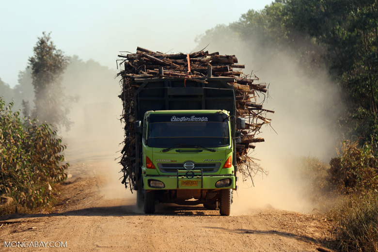 Truck carrying acacia logs [riau_5910]