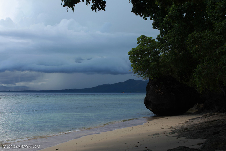 White sand beach and turquoise waters in Sulawesi