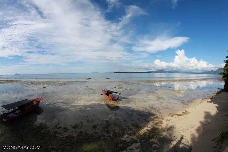 Dive boat on a beach in Sulawesi