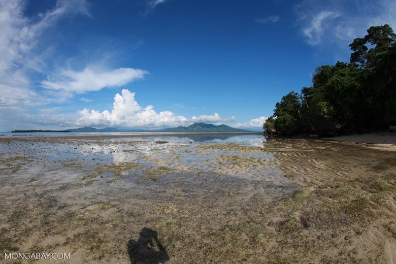 Beach at low tide near Bunaken Cha Cha
