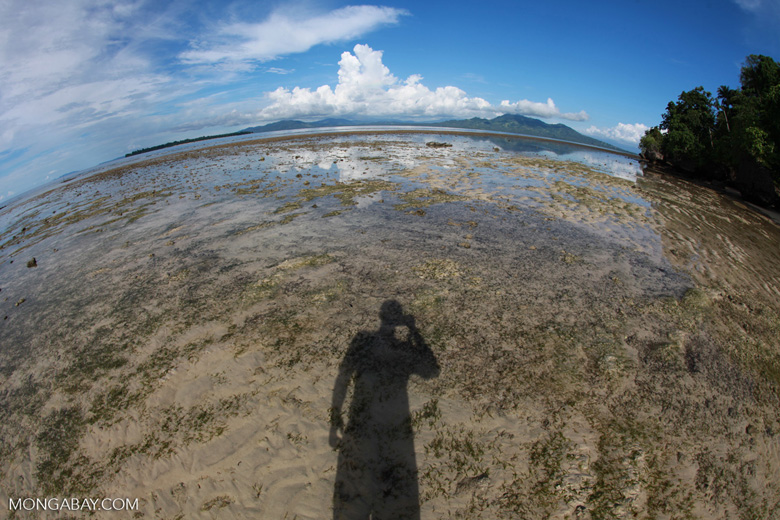 Beach at low tide near Bunaken Cha Cha