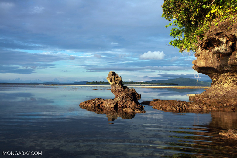 Tidepool on Bunaken Island