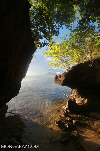 Rocks, beach, and mangroves on Bunaken