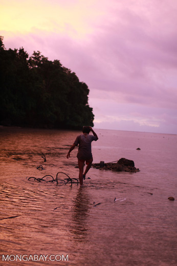 Fisherman working at dusk in Sulawesi