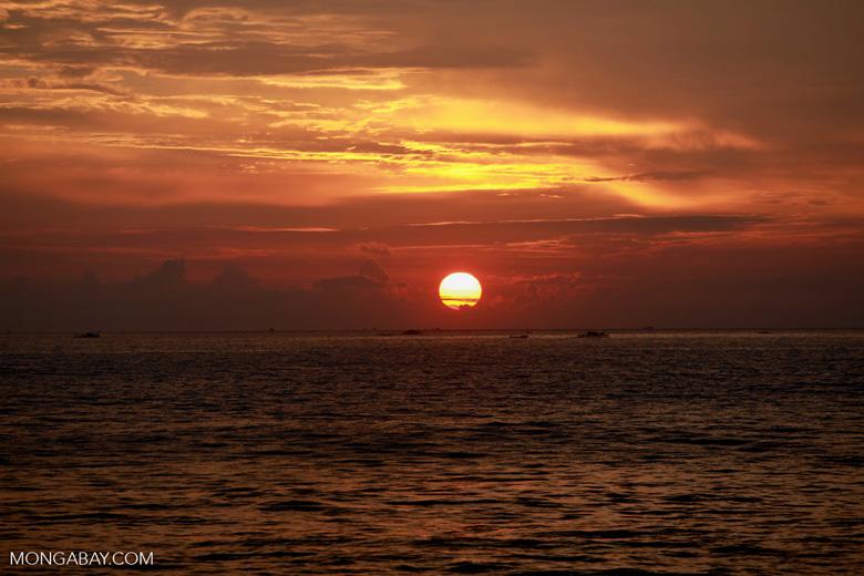 Sulawesi dawn