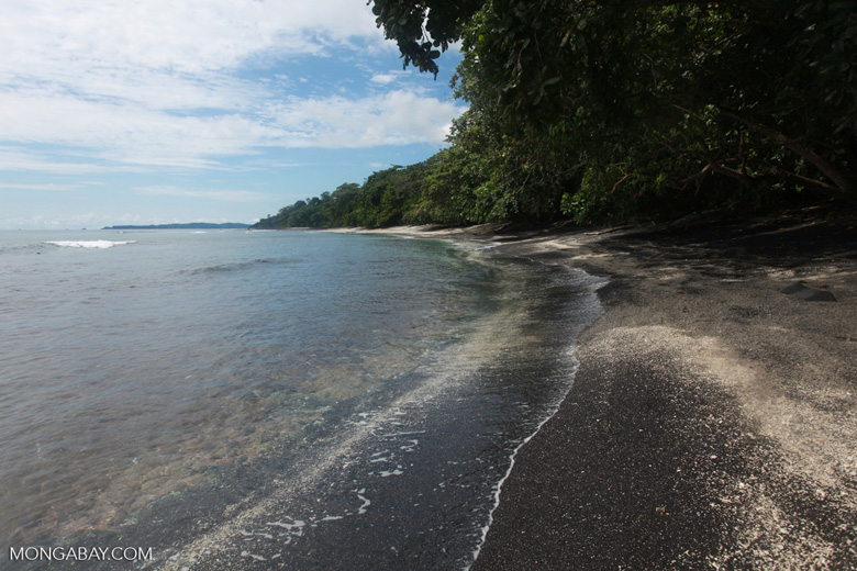 Black sand beach on the Lembeh Strait
