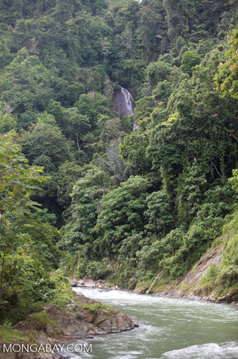 Bohorok River forming the border of Taman Nasional Gunung Leuser