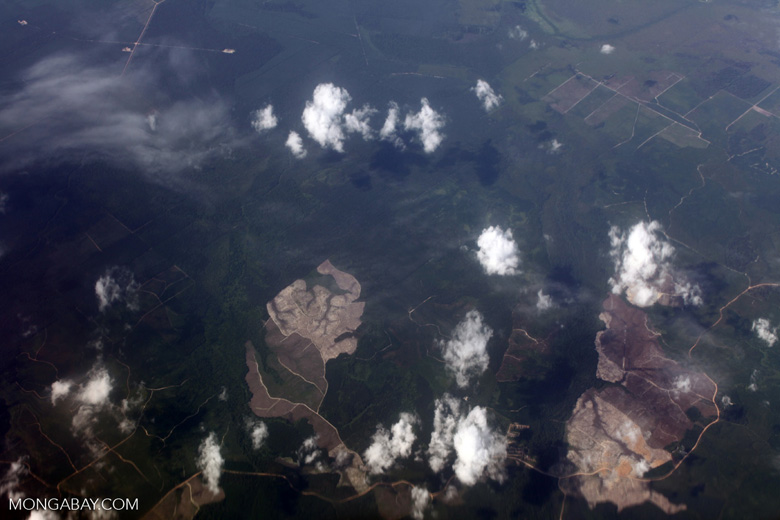 Aerial view of deforestation for plantation agriculture in Sumatra