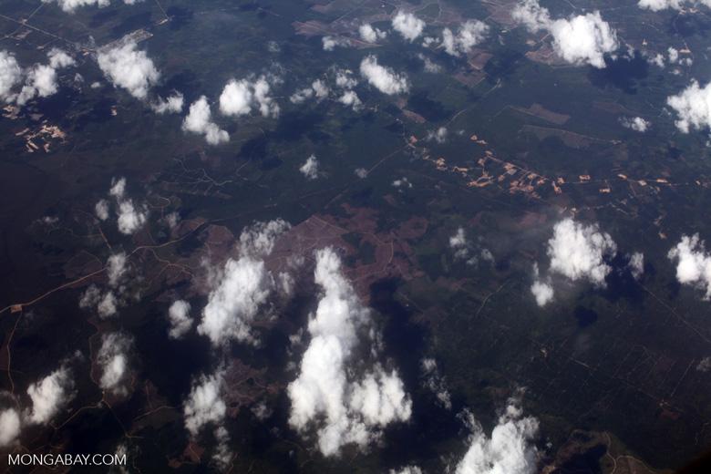 Aerial view of deforestation in Sumatra