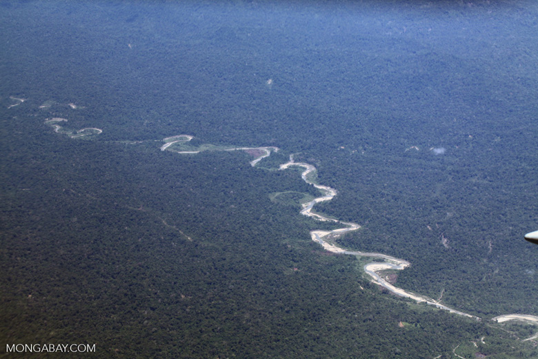 Aerial view of a river in West Papua