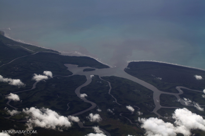 Coastal wetland and river mouth in West Papua