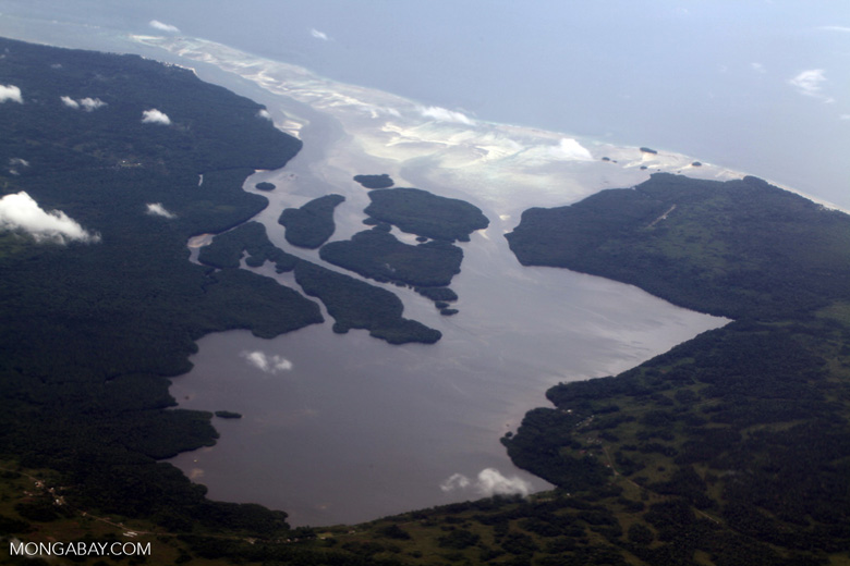 Mangroves and coastline of northern New Guinea