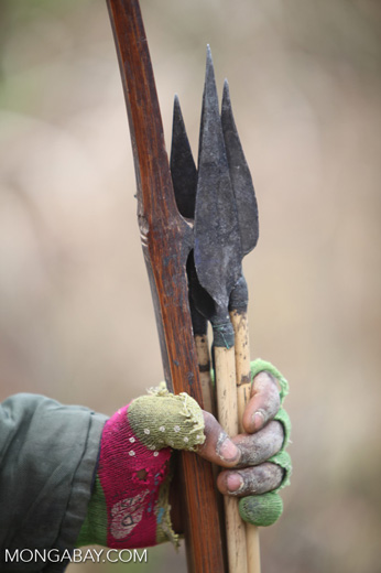 Arrows in the hand of a Mouley