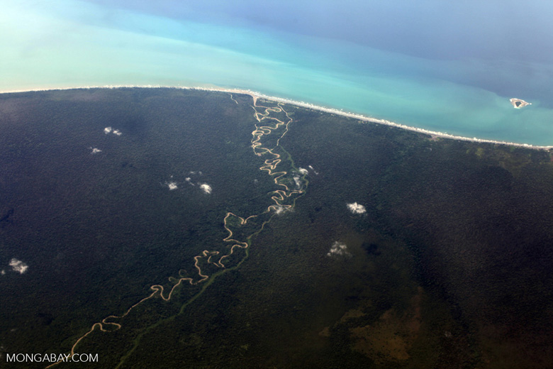 Twisting lowland rainforest river reaching the coast of New Guinea