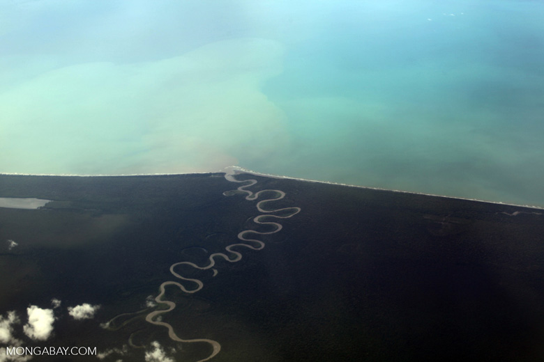 Aerial view of a Jungle river reaching the coast of New Guinea