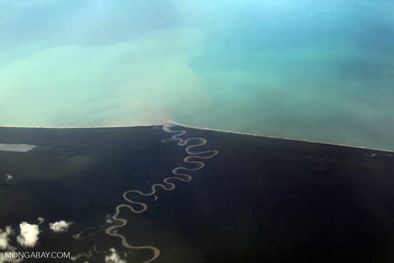 Aerial view of a Winding jungle river reaching the coast of New Guinea