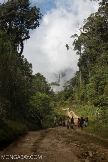 Papuan men on the road to Syioubri village and Senopi